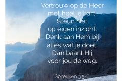 Vertrouw op de Heer met heel je hart. Steun niet op eigen inzicht. Denk aan Hem bij alles wat je doet. Dan baant Hij voor jou de weg
