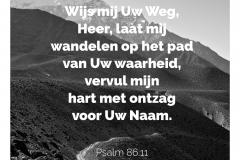 Wijs mij Uw weg, Heer laat mij wandelen op het pad van Uw waarheid, vervul mijn hart met ontzag voor Uw Naam.